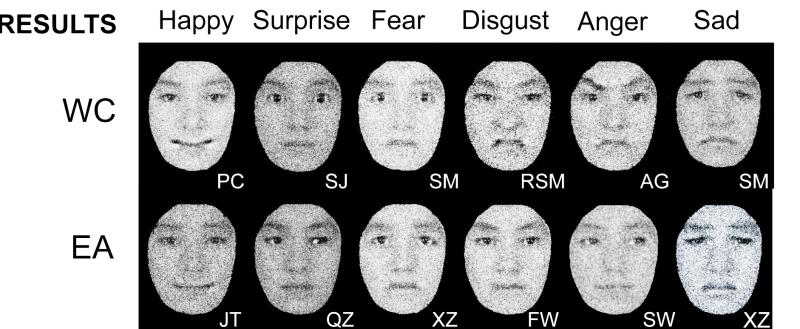 From self to social cognition: Theory of Mind mechanisms Ekman and friesen 1976 pictures of facial affect