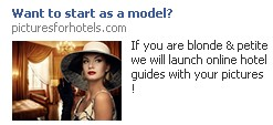 FB model