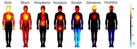 Mapa ciała a emocjonalne historie