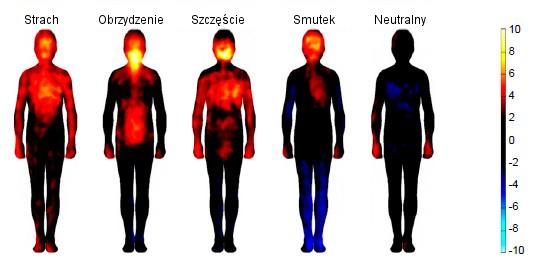 Mapa emocji w ciele pod wpływem video