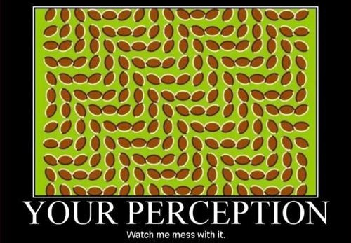 perception-bender